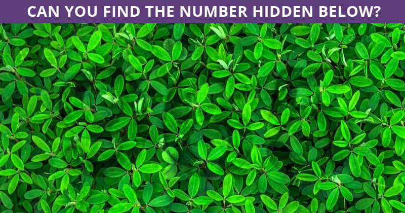 Only 1 In 30 People Can Achieve 100% In This Tough Hidden Number Visual Challenge. How About You?