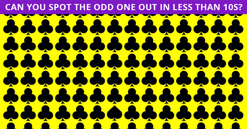 Only 5% Can Nail This Odd One Out Quiz! Find Out If Your IQ Is High Enough To Pass This Test