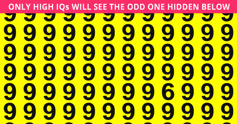 This Puzzle Will Determine Your Visual Perception In About 60 Seconds