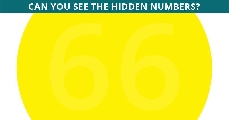 Can You See What Number Is Hidden In The Image?
