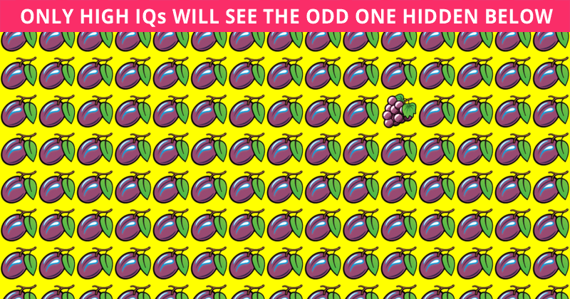 Only People With An Unusually High IQ Will Be Able To Best This Visual Test! How About You?